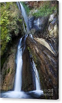 Limekiln Waterfall Canvas Print by Jenna Szerlag