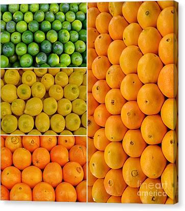 Limes Lemons Oranges Canvas Print by Sabine Jacobs