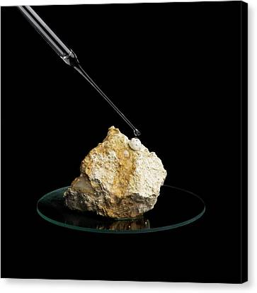 Limestone Reacting With Acid Canvas Print by Science Photo Library