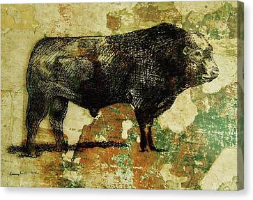 Canvas Print featuring the drawing French Limousine Bull 11 by Larry Campbell