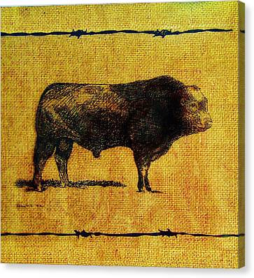Canvas Print featuring the drawing French Limousine Bull 12 by Larry Campbell