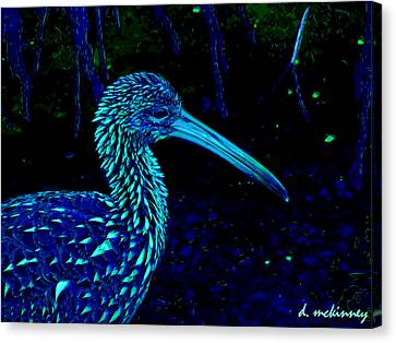 Limpkin Canvas Print by David Mckinney