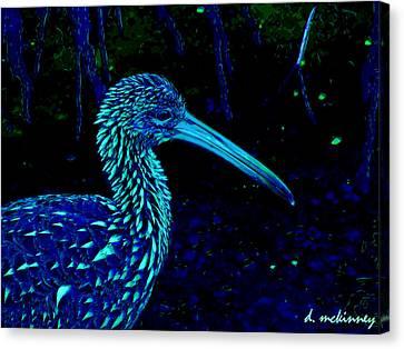 Limpkin Canvas Print