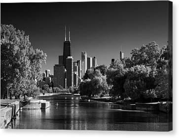 Lincoln Park Lagoon Chicago B W Canvas Print by Steve Gadomski