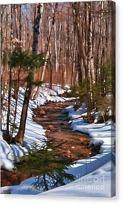 Lincoln Woods Trail Canvas Print by Sharon Seaward