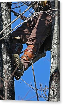 Lineman Canvas Print by Denise Romano