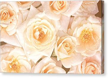 Engagement Canvas Print - Linen Roses by Georgiana Romanovna