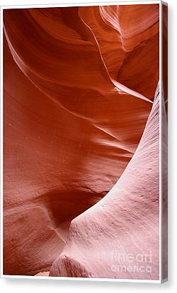 Canvas Print featuring the photograph Lines And Light In The Canyon by Ruth Jolly