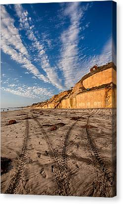 Lines Lines And Lines Canvas Print by Peter Tellone