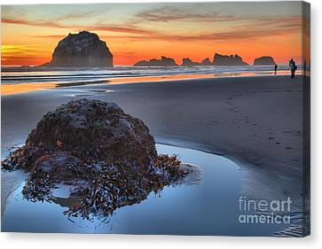 Lining Up For The Shot Canvas Print by Adam Jewell
