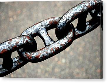 Linked Canvas Print by Charlie and Norma Brock