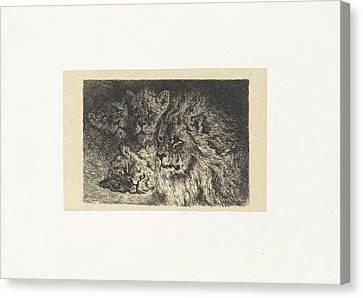 Lion And Lioness, Frederik Willem Zrcher Canvas Print by Frederik Willem Z?rcher