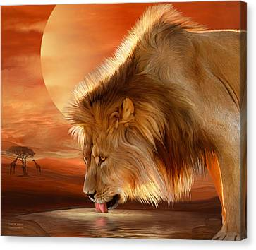 Lions Canvas Print - Lion At Sunset by Carol Cavalaris