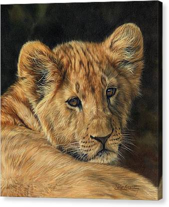 Lions Canvas Print - Lion Cub by David Stribbling