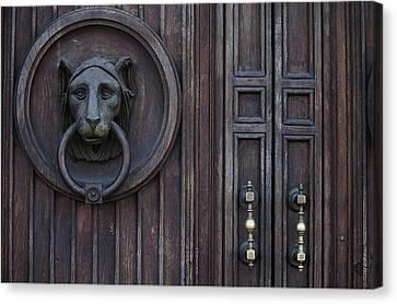 Lion Door Canvas Print