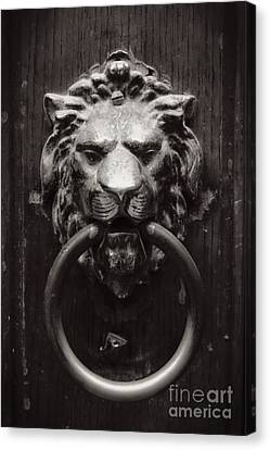 Lion Door Knocker Canvas Print by Carol Groenen
