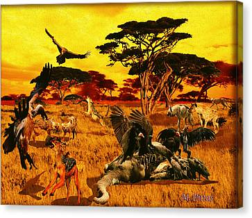 Lion Kill Morning After'98 Canvas Print