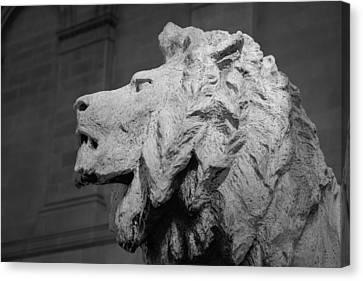 Lion Of The Art Institute Chicago B W Canvas Print by Steve Gadomski
