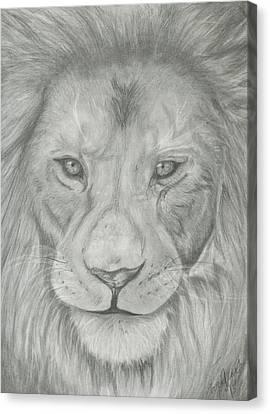 Lion Canvas Print by Raquel Ventura