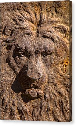 Lion Wall Canvas Print by Garry Gay