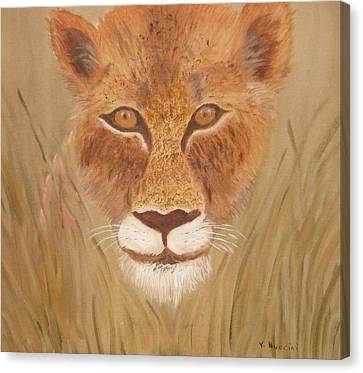 Lioness In Waiting Canvas Print by Vickie G Buccini