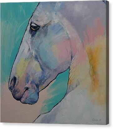 Lipizzan Stallion Canvas Print by Michael Creese