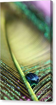 Liquid Reflections Canvas Print