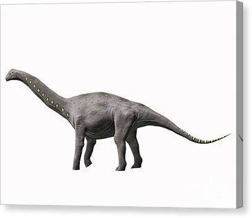 Lirainosaurus Astibae, Late Cretaceous Canvas Print by Nobumichi Tamura