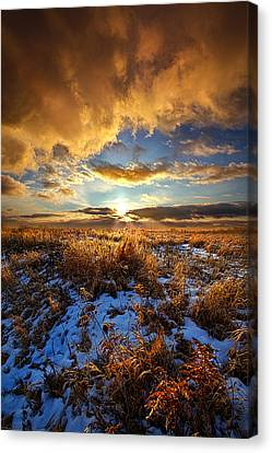 Listen To Your Heart Canvas Print by Phil Koch