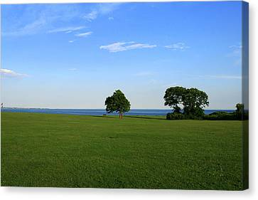 Listening To The Breeze  Canvas Print by Neal Eslinger