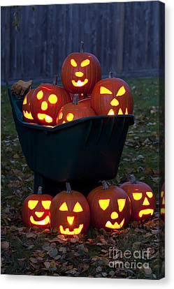 Lit Carved Pumpkins In Wheelbarrow Canvas Print by Jim Corwin