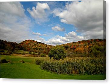 Litchfield Valley Canvas Print by Diana Angstadt