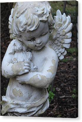 Canvas Print featuring the photograph Little Angel by Beth Vincent