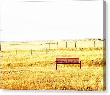 Little Bench On The Prairie Canvas Print by Lenore Senior