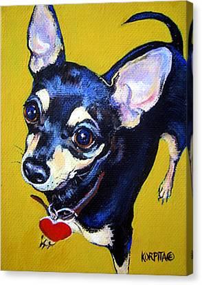 Little Bitty Chihuahua Canvas Print by Rebecca Korpita