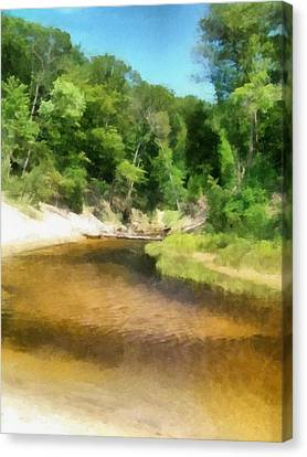 Little Black Creek - Hoffmaster State Park Canvas Print by Michelle Calkins