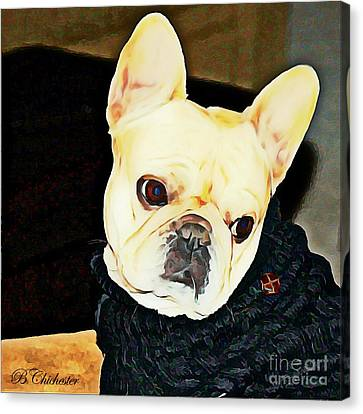 Little Black Sweater Canvas Print by Barbara Chichester
