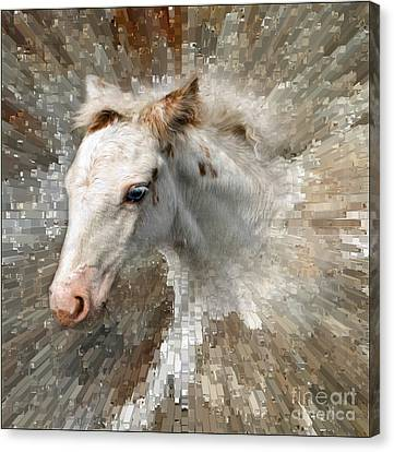 Little Blue Eye Canvas Print by Liz  Alderdice