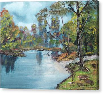 Little Brook Canvas Print by Michael Daniels