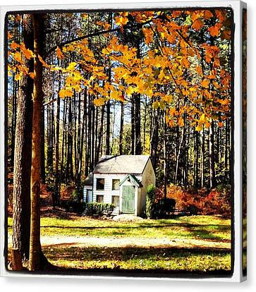 Little Cabin In The Woods Canvas Print by Amanda Enos