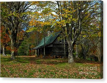 Little Cabin In The Woods Canvas Print by Benanne Stiens