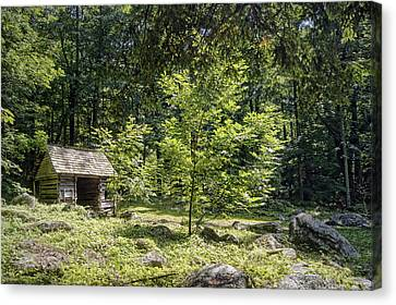 Little Cabin In The Woods Canvas Print by Cricket Hackmann