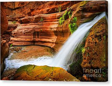 Slickrock Canvas Print - Little Deer Creek Fall by Inge Johnsson