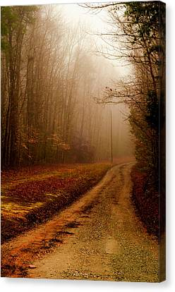 Little Dirt Road Canvas Print by Laura DAddona