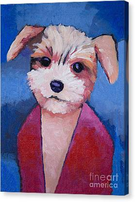 Little Dog Canvas Print by Lutz Baar