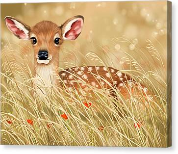 Deer Canvas Print - Little Fawn by Veronica Minozzi
