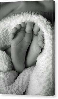 Little Feet Canvas Print by Mamie Thornbrue