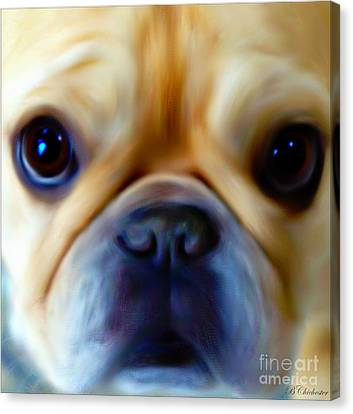Little Frenchie Face Canvas Print by Barbara Chichester