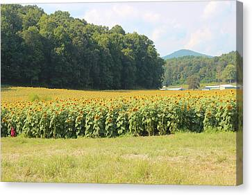 Ga Canvas Print - Little Girl And Big Sunflowers by Cathy Lindsey