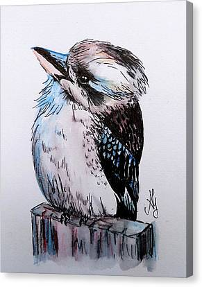 Little Kookaburra Canvas Print
